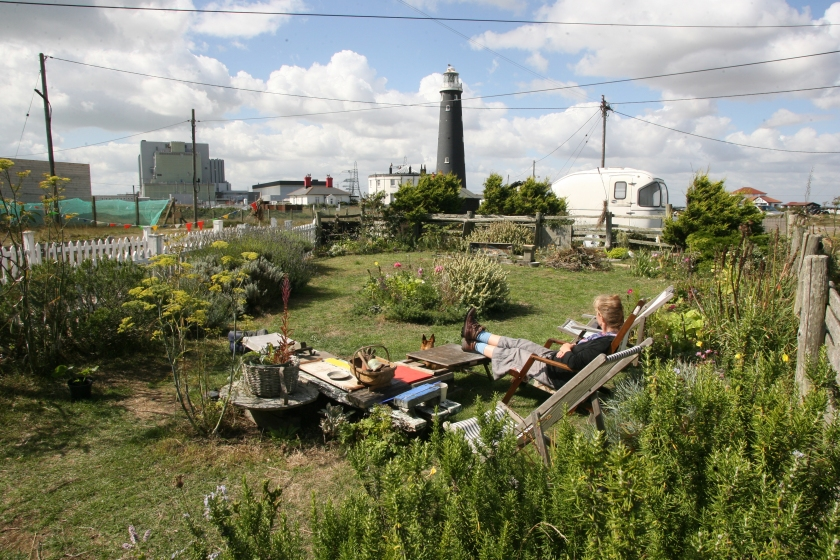 Paddy Hamilton's  Dungeness garden complete with lawn and picket fence           All Dungeness photographs by Hattie Miles